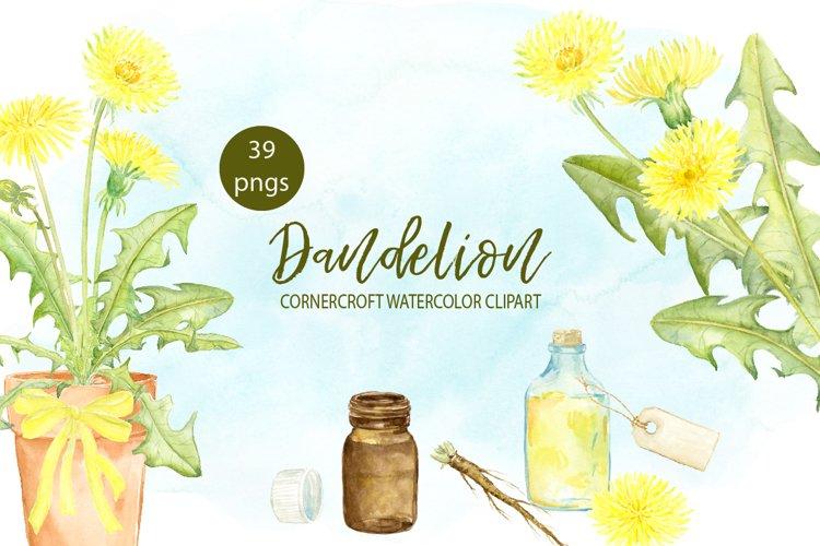 Watercolor Dandelion Clipart