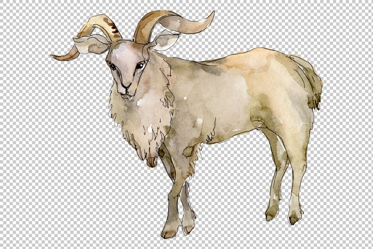 Agriculture goat Watercolor png example image 1