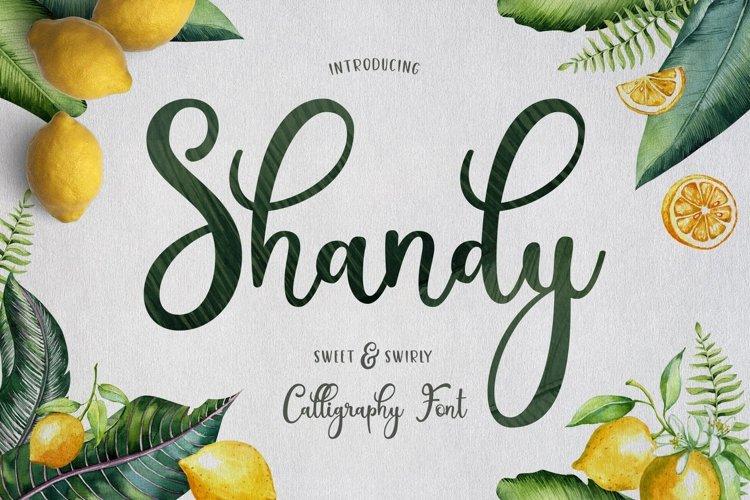 Web Font Shandy example image 1