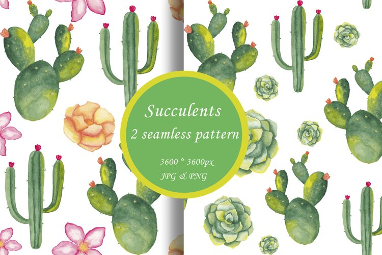 Watercolor succulents seamless pattern Cactus digital paper