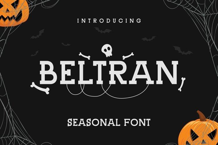 Web Font Beltran Font example image 1
