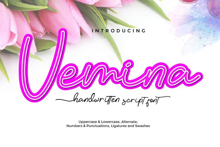 Vemina Handwritten Monoline Script Font example image 1