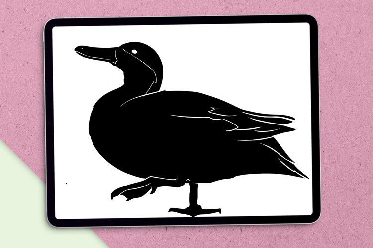 Download Duck Svg 897428 Cut Files Design Bundles