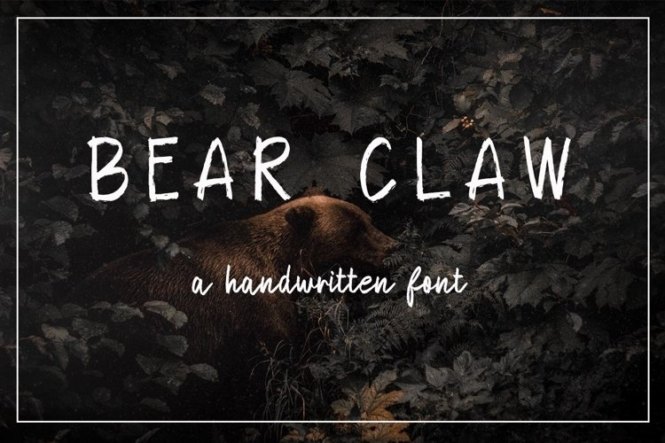 Bear Claw example image 1