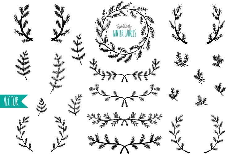 Winter Laurels