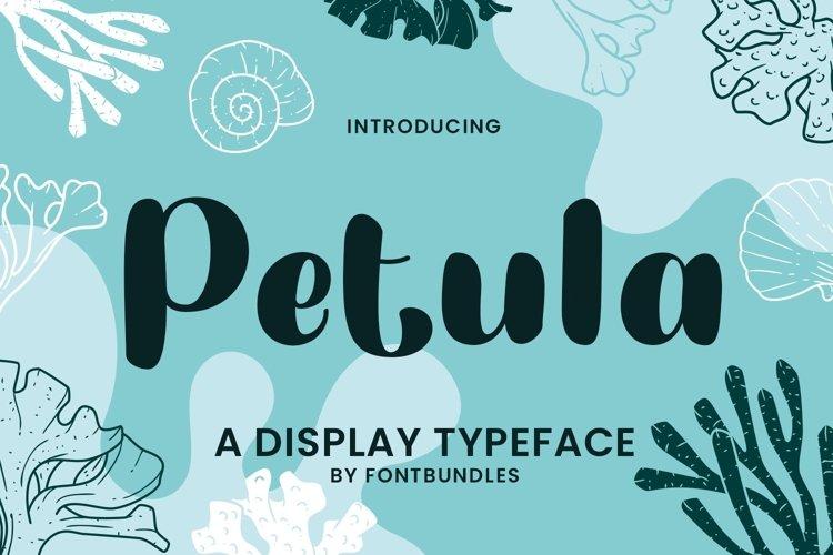 Web Font Petula example image 1