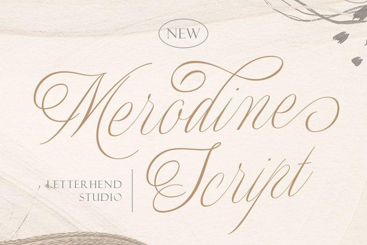 Merodine Script example image 1