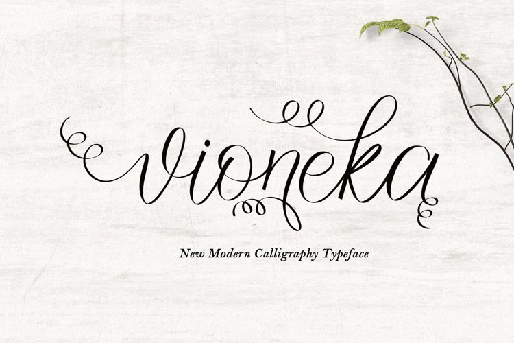 vioneka example image 1