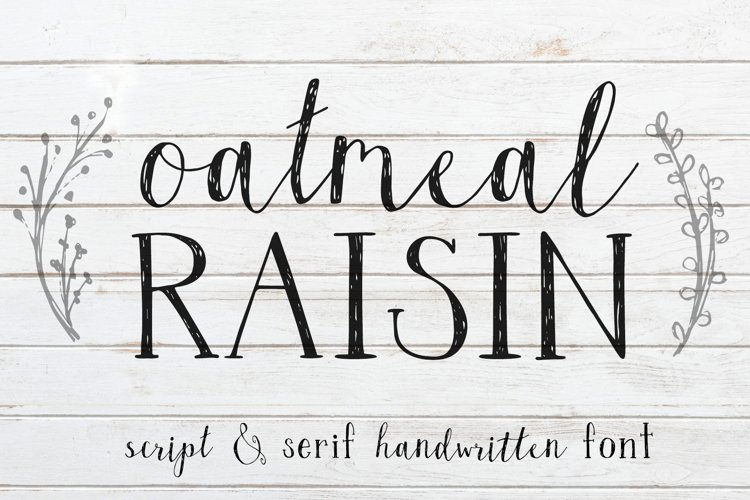 Oatmeal Raisin Script and Serif Font with Extras example image 1