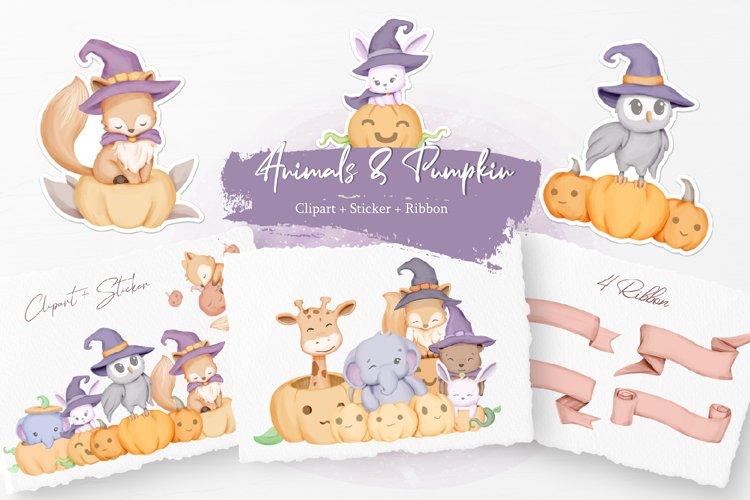 Cute Animals with Pumpkin