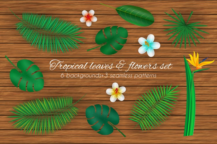 Tropical leaves and flowers set. example image 1
