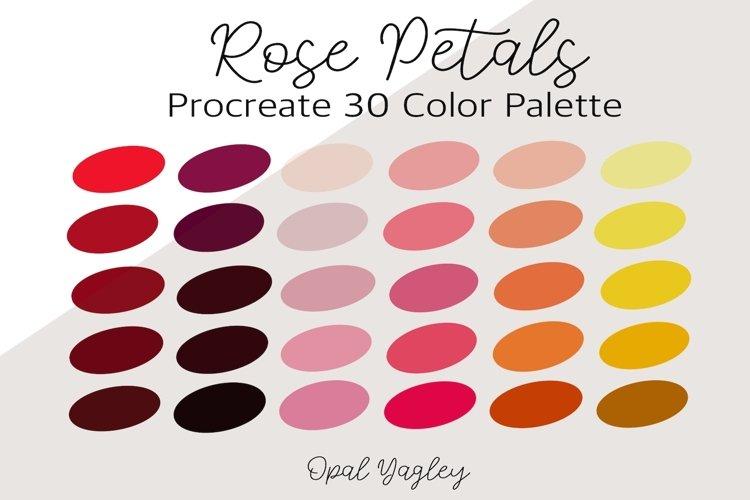 Rose Petals Procreate Color Palette / 30 Roses Colors example image 1