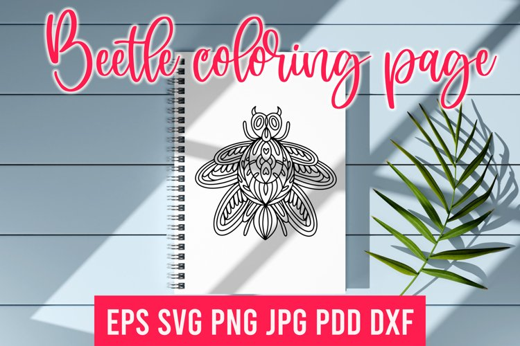 Beetle SVG.Beetle coloring page. Insect SVG
