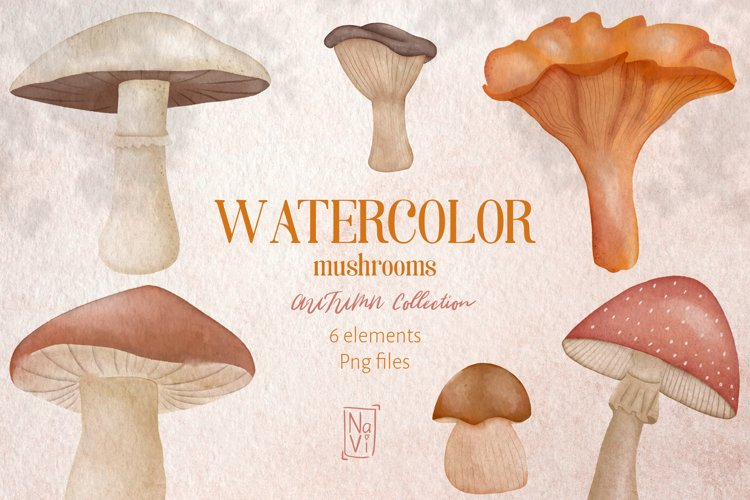 Autumn Clipart | Watercolor Mushrooms Png