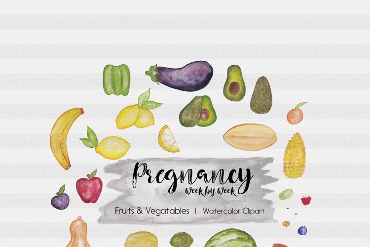 Pregnancy Clipart-Fruits & Vegis Clipart-Object Clipart-Watercolor Clipart-week by week Clipart-Planner Clipart-Food Clipart-Surrogacy
