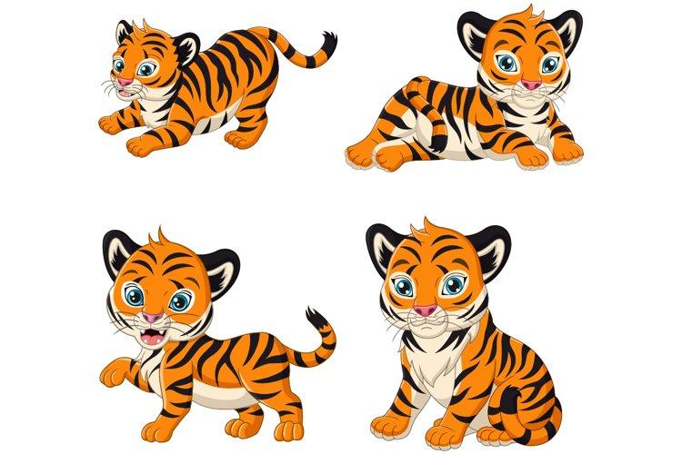 Cute Baby Tiger Cartoon Collection
