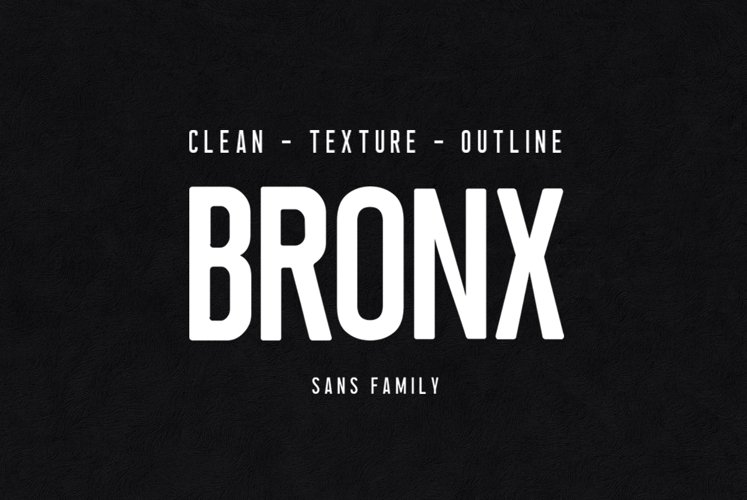 Bronx example image 1
