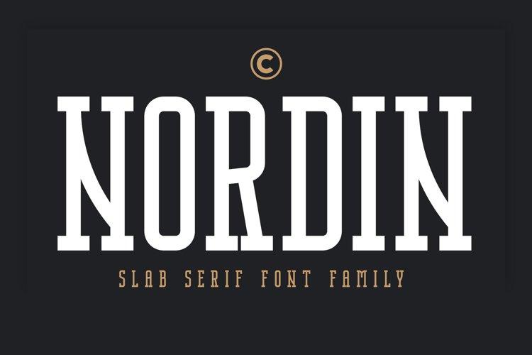 Nordin Slab - Condensed Slab Serif example image 1