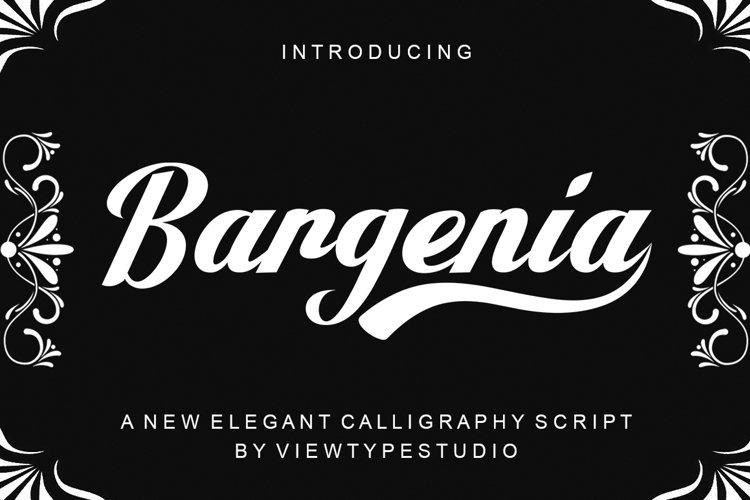 Bargenia script example image 1