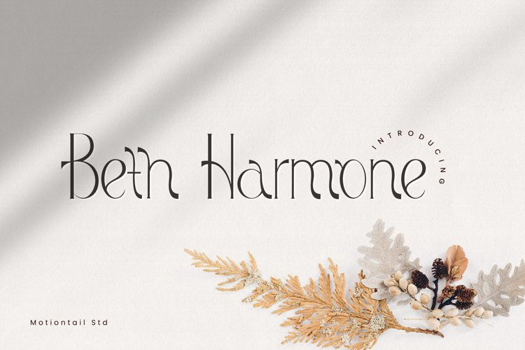 Beth Harmone-Modern Serif example image 1