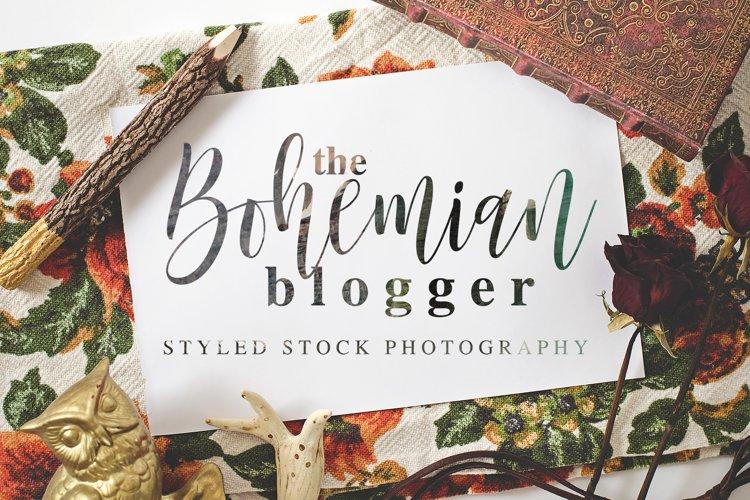 The Bohemian Blogger Stock Photography