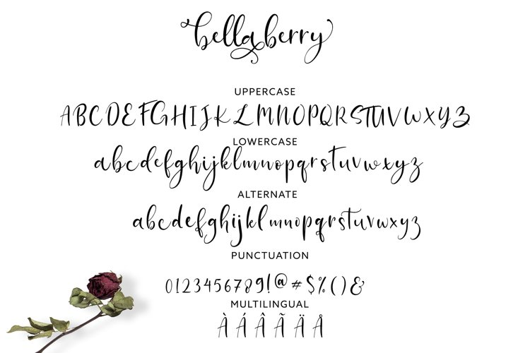 BellaBerry Lovely Script Font example 4