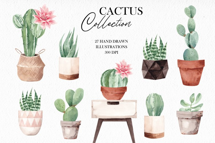 Watercolor Cactus Clipart, Home Plants example image 1