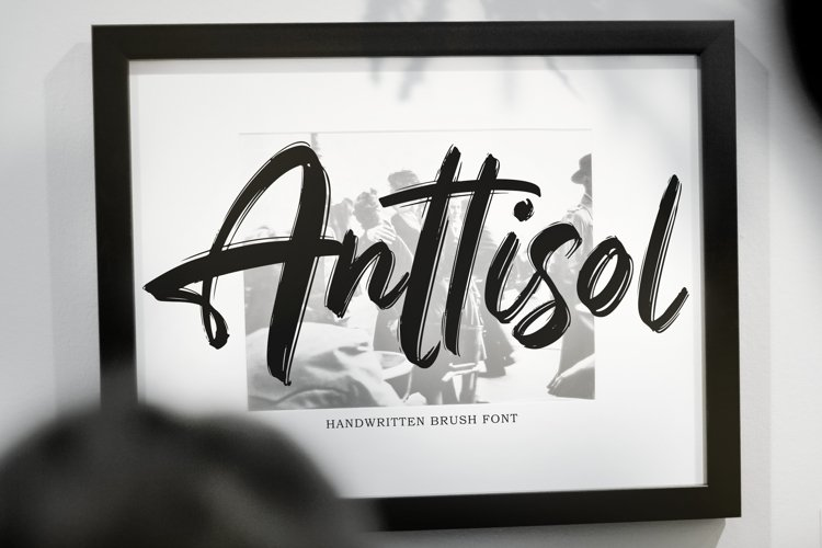Anttisol - Handwritten Brush Font example image 1