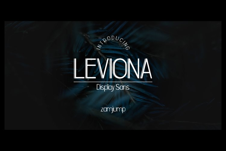 LEVIONA DISPLAY SANS example image 1