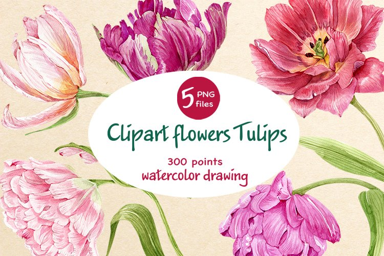 clipart flowers tulips