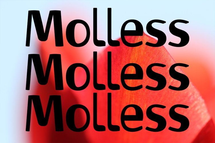 Molless example image 1