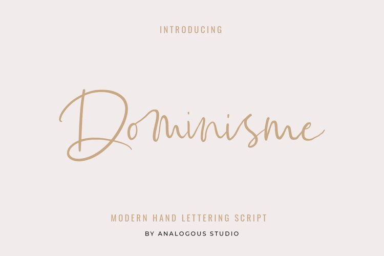 Dominisme Handwritten Font example image 1