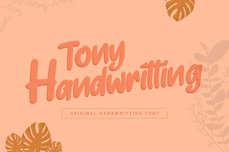 Tony Handwritting Font example image 1