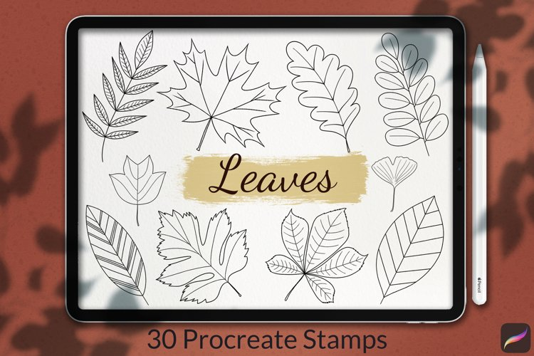 30 Leaves Stamp Brushes for Procreate, Autumn Collection example image 1