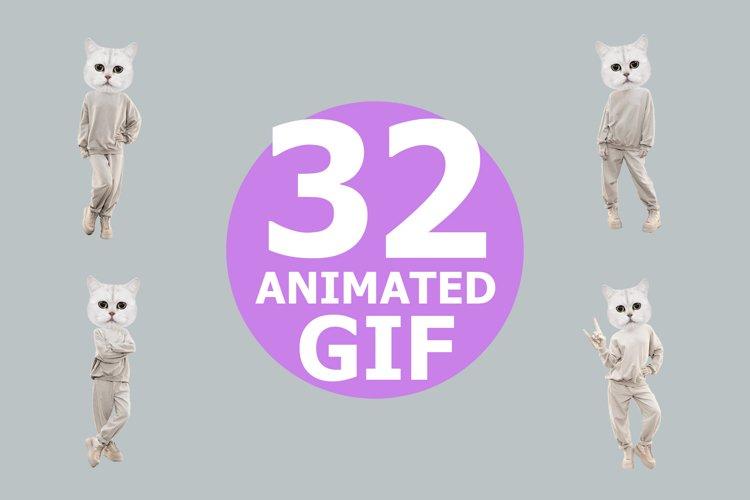 Funny gif animated Kitty power example image 1