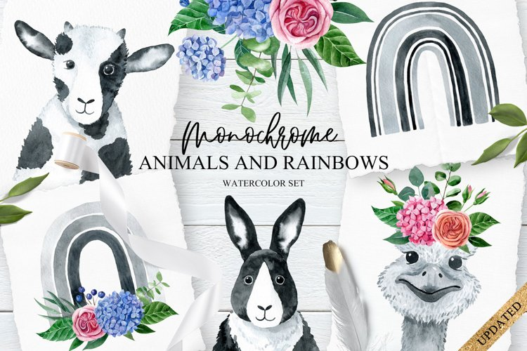 Monochrome Animals and Rainbows example image 1