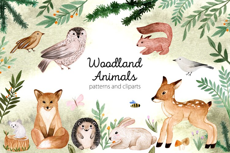Woodland Animals. Patterns, Cliparts