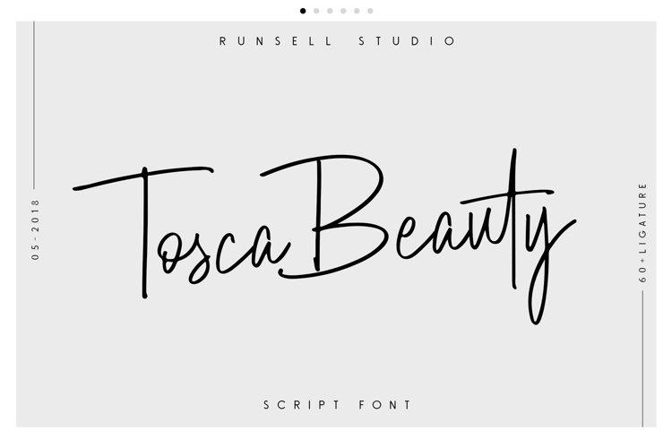 Tosca Beauty Handwritten Font example image 1