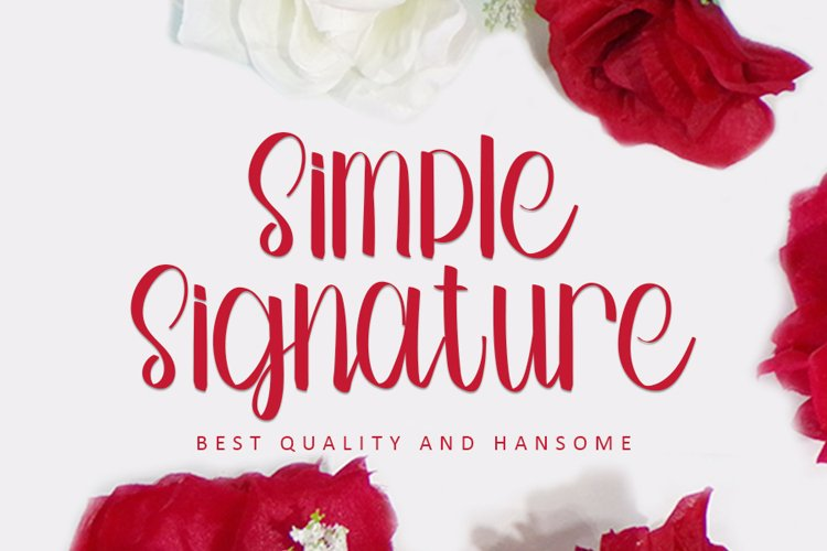 Simple Signature - A Modern Handwritten Font example image 1