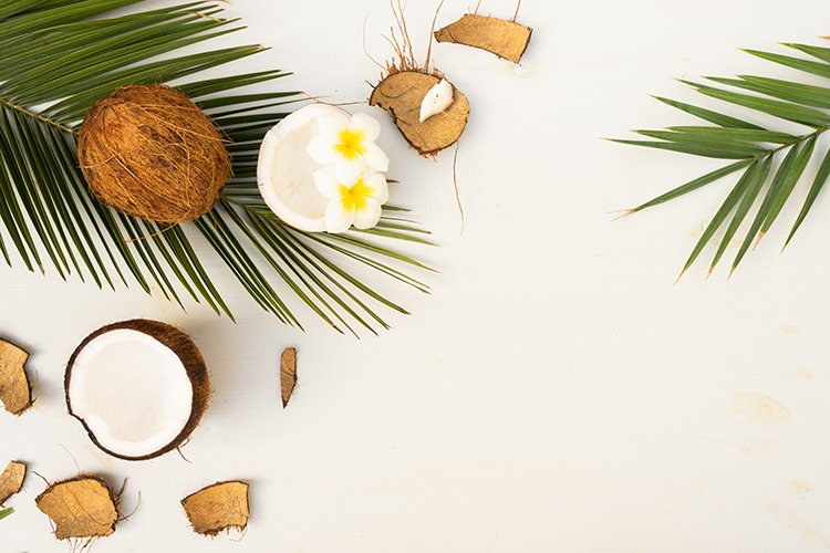 palm leaves and frangipani flowers with coconuts