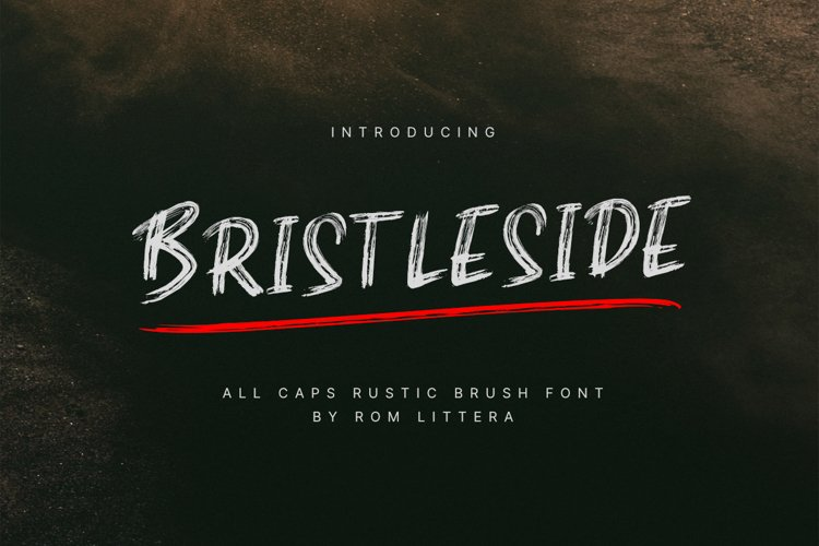 Bristleside example image 1