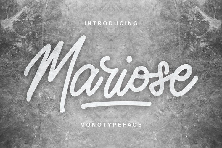 Mariose | Monotypeface Script Font example image 1