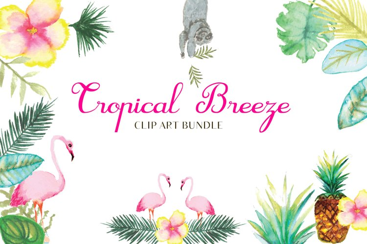 Water color, Tropical Breeze clip art bundle, Sloth example image 1