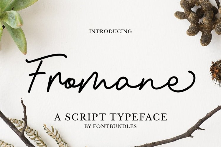 Web Font Fromane example image 1