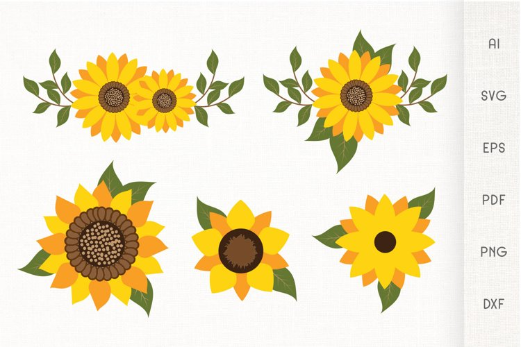 Sunflowers SVG - Sunflower With Leaves - Vector example image 1