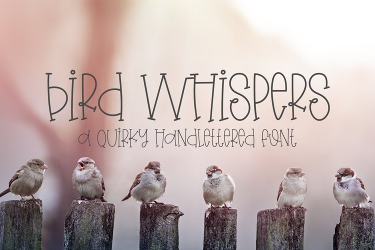 Bird Whispers - A Quirky Handlettered Font example image 1