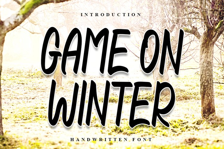 Game On Winter | Handwritten Font example image 1