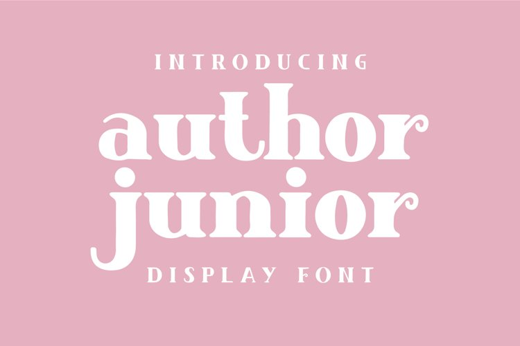Author Junior example image 1
