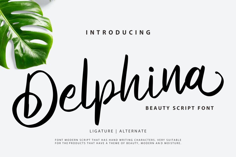 Delphina | Beauty Script Font example image 1