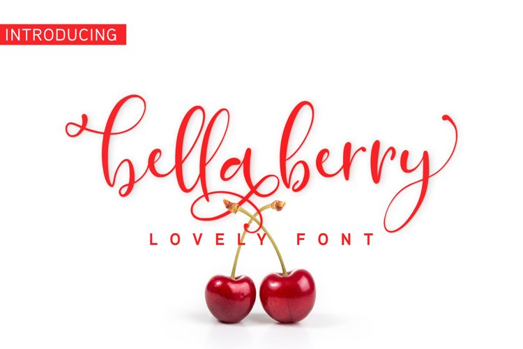 BellaBerry Lovely Script Font example image 1